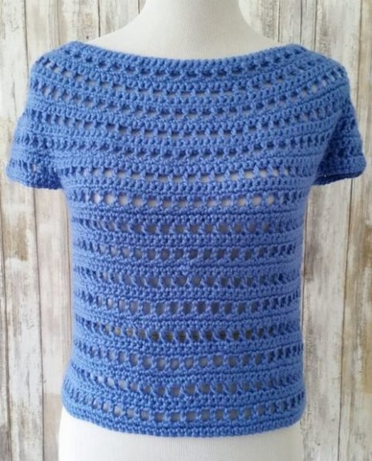 Summer Berry Free Crochet Top