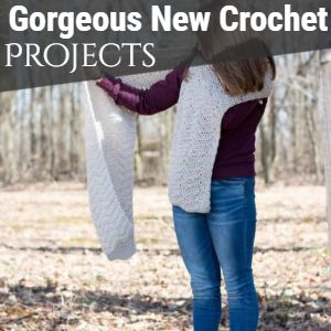 Gorgeous New Crochet Projects